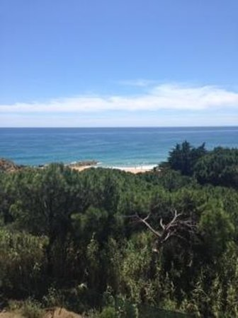 Auramar Beach Resort: view from balcony