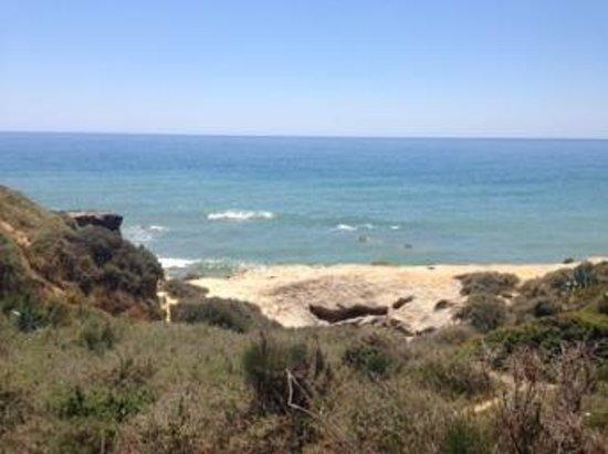 Auramar Beach Resort: view from pool to sea