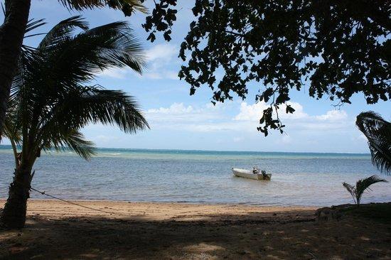 Oneta Resort: beach view