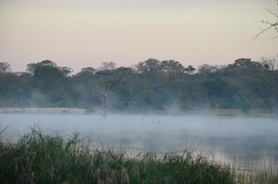 Chitwa Chitwa Private Game Reserve: Early morning mist..