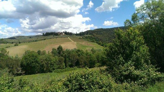 Poggio Asciutto: Pics from the Farmhous