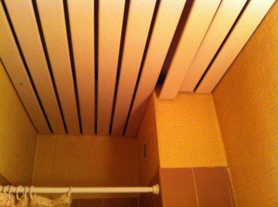 Hipotel Paris Pere Lachaise Republique : Soffitto bagno