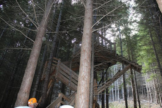 Ziptrek Ecotours: One of the take off points