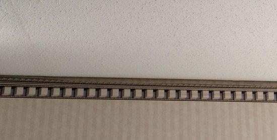 Aspire Gettysburg Hotel: Wallpaper border falling off