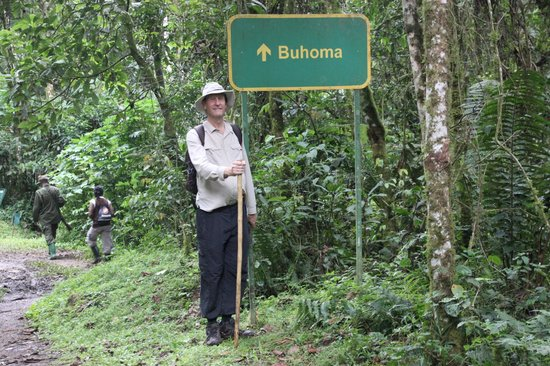 Bwindi Impenetrable National Park: Unexpected signpost on jungle track