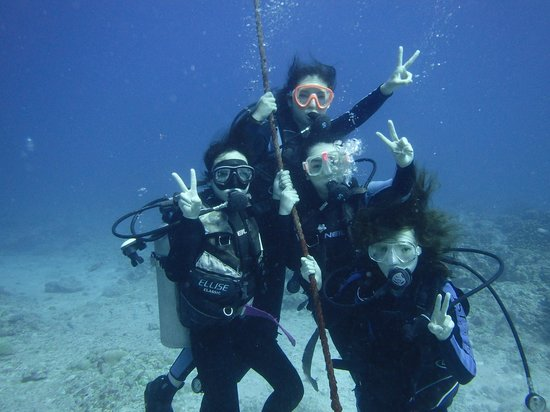 Grotto Snorkeling Sightseeing Day Tours - Sea Lovers: Diving