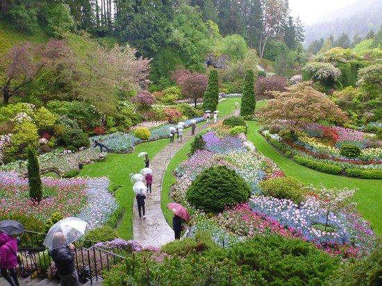 The Butchart Gardens : 美しい庭園