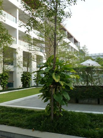 Nap Patong: du balcon