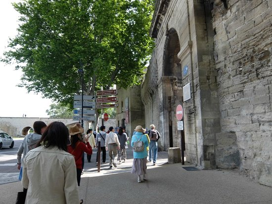 Pont Saint-Bénézet (Pont d'Avignon) : サン ベネゼ橋(通称アビニヨンの橋)