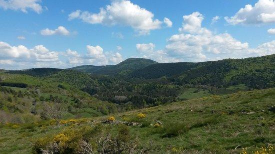 La Bergerie du Plateau : Vue