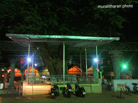 Mangaladevi Temple: Mangala devi temple outside view-Muralitharan photo