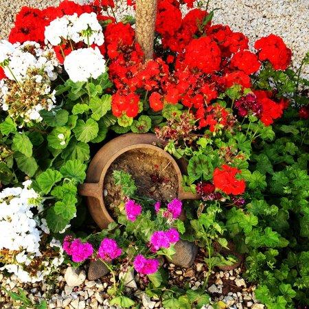 Sardunaki Konak Otel: Sardunaki'nin keyifli bahçesinden bir bölüm