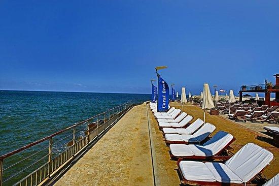 Coral Beach Hotel & Resort : Resort
