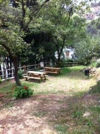 Residence Il Poggio di Andora: zona fresca e ombreggiata per gli amanti della lettura