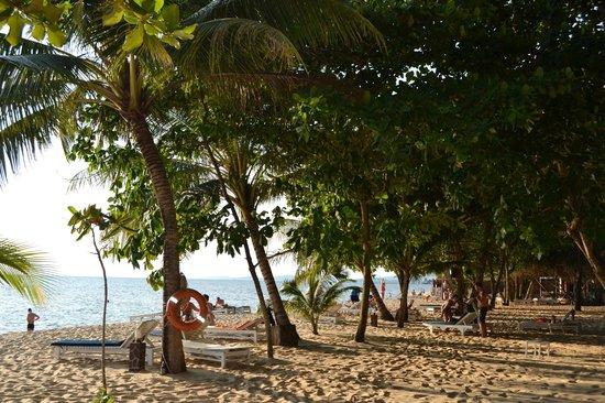 Sea Star Resort Phu Quoc : Beach