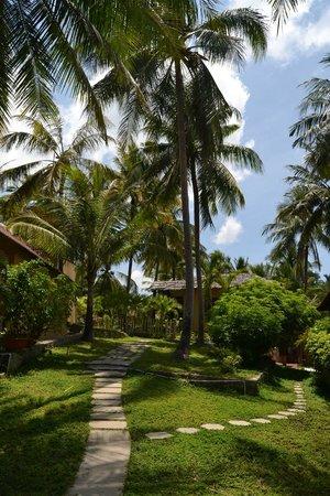Sea Star Resort : Hotel grounds