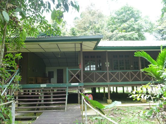 Mulu World Heritage Area Accommodation : Longhouse 1 Turtle Cave