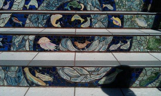 16 Avenue Tiled Steps : Steps
