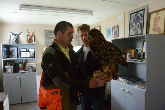 Dublin Falconry: Trevor helping holding the bird