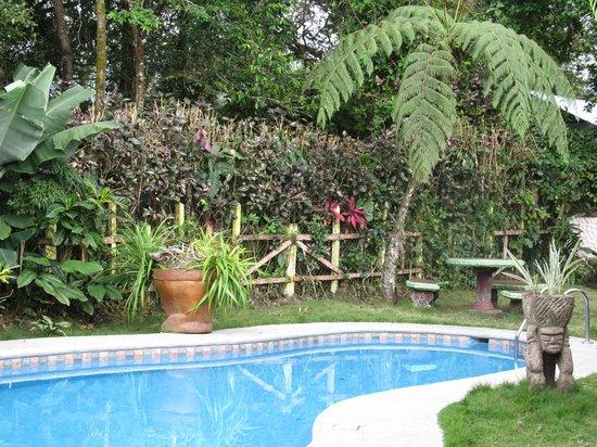 Hotel Vagabondo: pool
