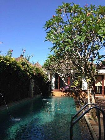 Amarterra Villas Bali Nusa Dua - MGallery Collection: My private pool