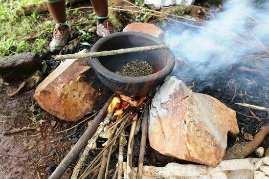 "1000 Cups of Coffee: Coffee safari- ""Country roast"""