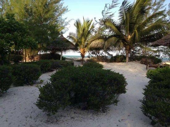 Hakuna Majiwe Beach Lodge: fuori dall'area ristorazione