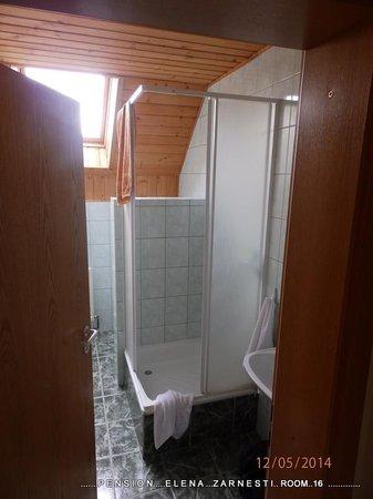 Pensiunea Elena: shower room