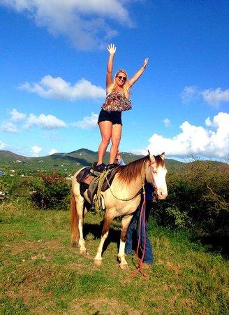 Equus Rides: 4