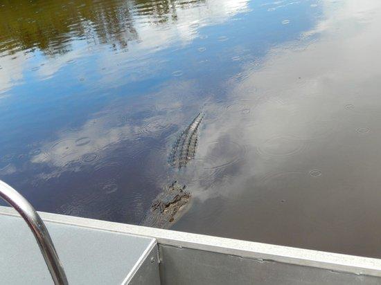 Jungle Erv's Everglades Airboat Tours: Ali near boat