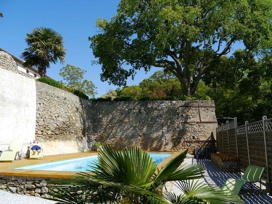 Chateau de Palaja : Outdoor Pool