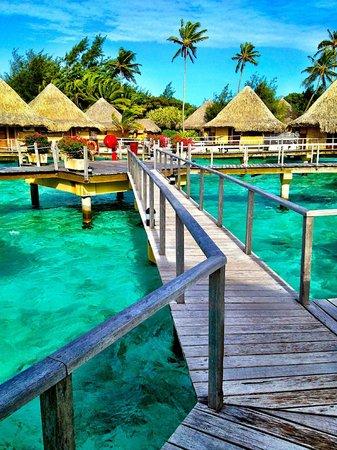 InterContinental Bora Bora Le Moana Resort : Beautiful!