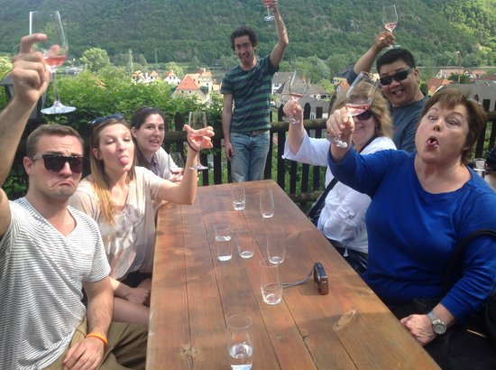 Discover Vienna Tours: Prost! Grape Grazers on Grape Grazing Winery Bike Tour
