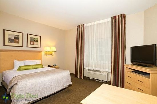 Candlewood Suites Ft Myers - I-75: Standard suite