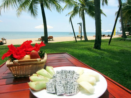 Chen Sea Resort & Spa Phu Quoc: View from the patio