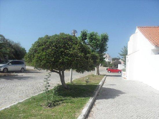Vilanova Resort: Outside Villa
