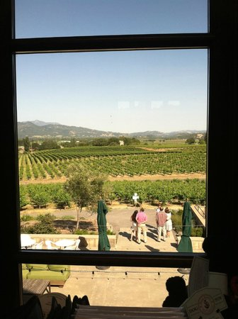 Francis Ford Coppola Winery: View from second floor gift shop/museum