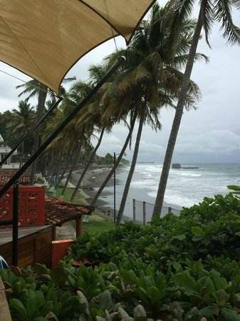 Kayu Resort: View from the restaurant across the street towards El Tunco