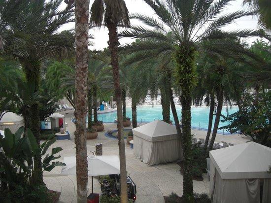 Hard Rock Hotel at Universal Orlando: Pisicna temperada