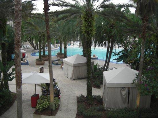 Hard Rock Hotel at Universal Orlando: Hermosa piscina