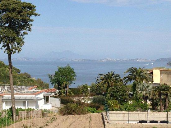 Garden & Villas Resort: Vista dalla stanza 181