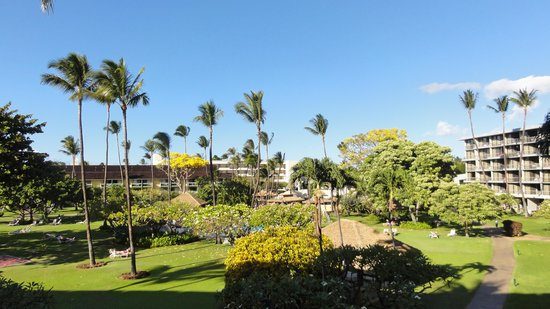 Kaanapali Beach Hotel: Ahhhhh.... paradise from your room
