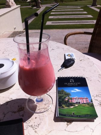 Villa Padierna Palace Hotel: €13 Milkshake !!!