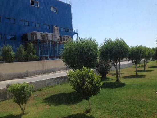 """Pearl Hotel: View from a """"Garden View Room"""""""