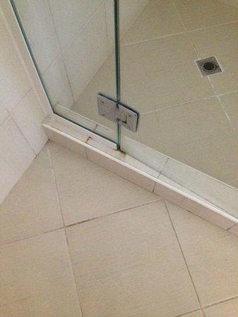 Pearl Hotel: Shower door
