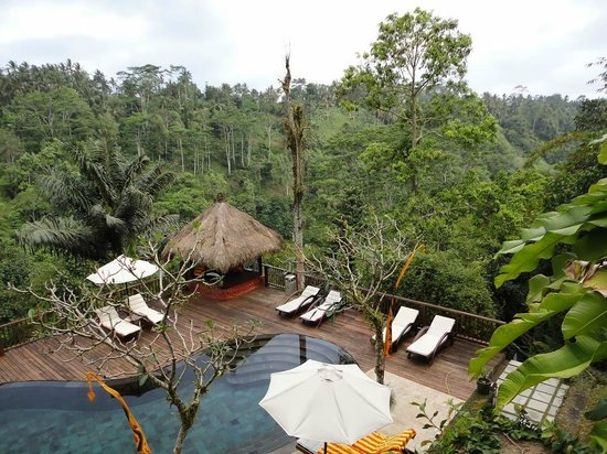 Nandini Bali Jungle Resort & Spa : la piscine