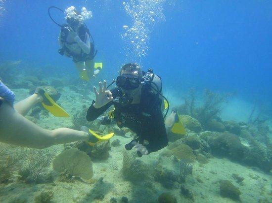 Playa Tranquilo: Mergulho!