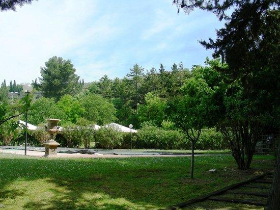 Casa Giulia Country House: Il parco con piscina