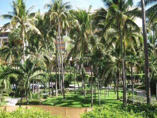 Club Regina Puerto Vallarta: Landscapeing
