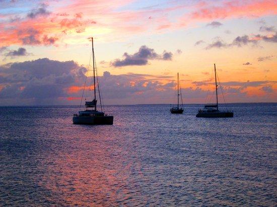 Ocean 82 : Gorgeous view